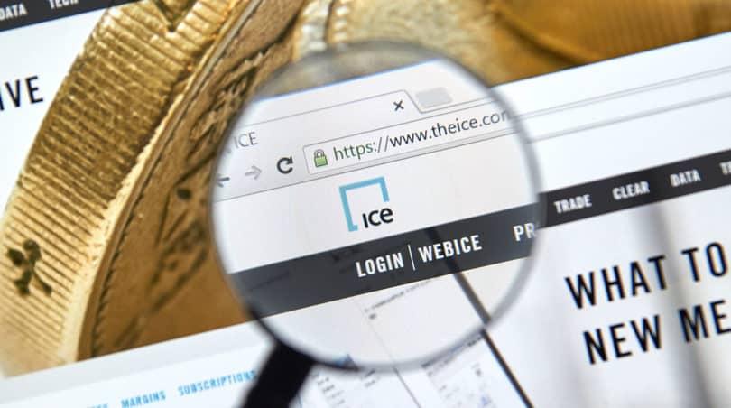 ICE website