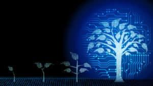 Digital market growing concept