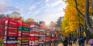 CHUNCHEON, GANGWON-DO SOUTH KOREA - OCTOBER 29: Autumn of Nami island in the morning South Korea Photo taken on October 29, 2017 in Chuncheon, Gangwon-do South Korea. Source: shutterstock.com