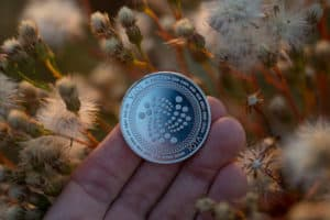 Iota cryptocurrency physical coin held in the hand next to autumn branches. Source; shutterstock.com