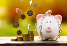 A piggy bank with security and lock and stacking and dropping gold coins with growing money in the public park, a saving for future investment concept.