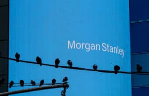 New York, August 2, 2016 A number of pigeons are sitting on two wires in front of a big Morgan Stanley electronic screen near Times Square.