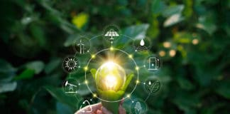 Hand holding light bulb against nature on green leaf with icons energy sources for renewable, sustainable development. Ecology concept. Elements of this image furnished by NASA. - Image