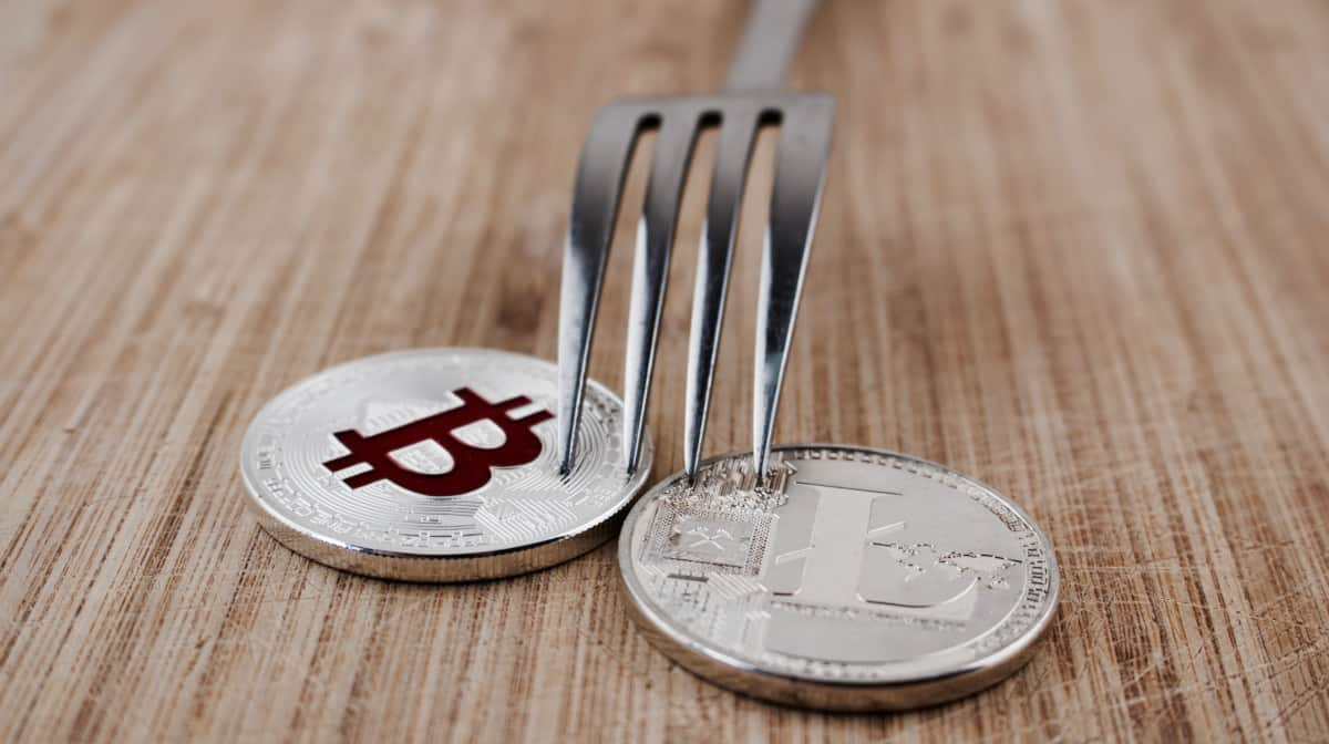 Is Dash a fork of Bitcoin or Litecoin - Source: ShutterStock.com
