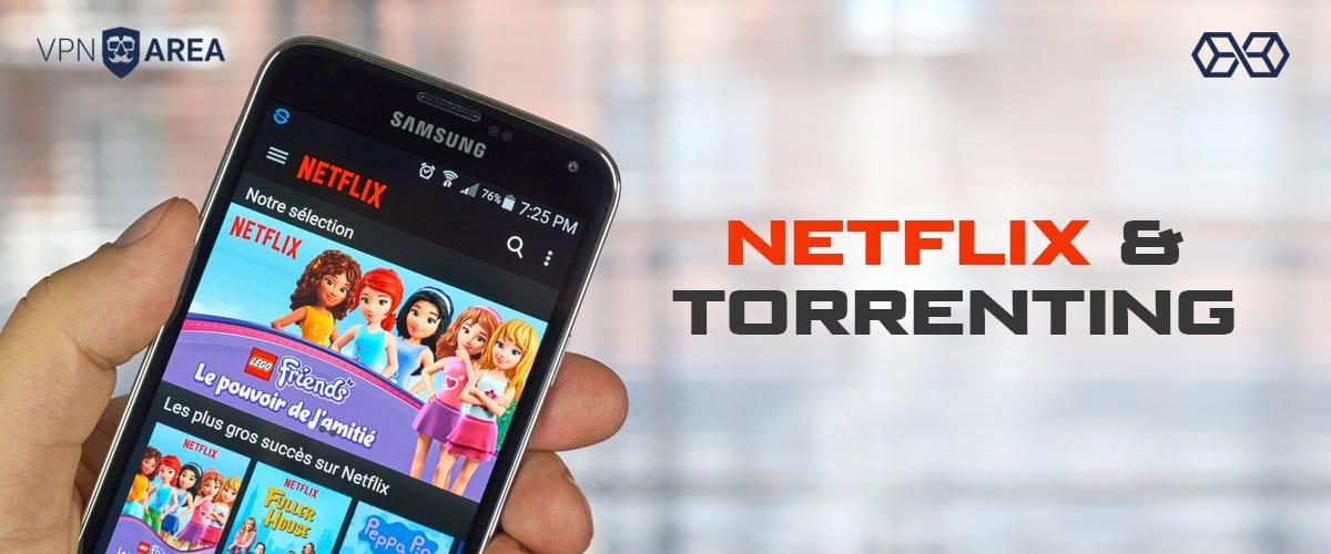 Netflix and Torrenting VPNArea - Source: Shutterstock.com
